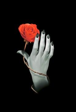 Rozes Roka