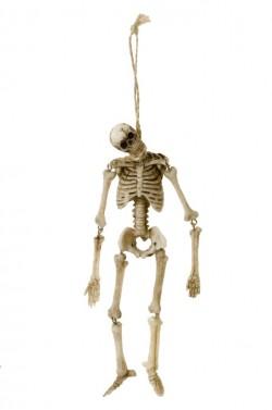 Skeletiņš